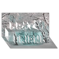 Another Winter Wonderland 2 Best Friends 3D Greeting Card (8x4)