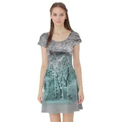 Another Winter Wonderland 2 Short Sleeve Skater Dresses
