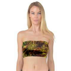 Up Stairs Women s Bandeau Tops