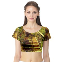 Short Sleeve Crop Top (Tight Fit)