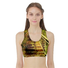 Up Stairs Women s Sports Bra with Border