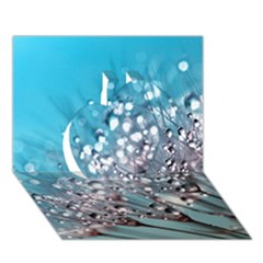 Dandelion 2015 0702 Apple 3d Greeting Card (7x5)