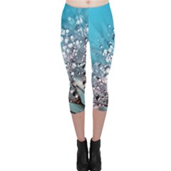 Dandelion 2015 0702 Capri Leggings