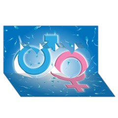 Sperm And Gender Symbols  Twin Hearts 3d Greeting Card (8x4)