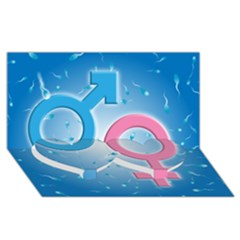 Sperm and Gender Symbols  Twin Heart Bottom 3D Greeting Card (8x4)
