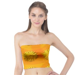 Dandelion Pattern Women s Tube Tops
