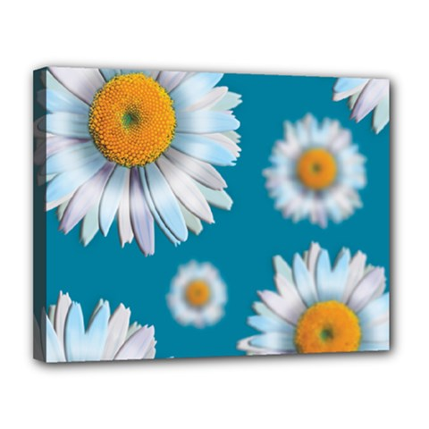 Floating Daisies Canvas 14  X 11