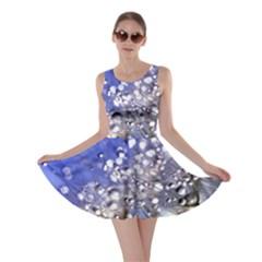 Dandelion 2015 0704 Skater Dresses
