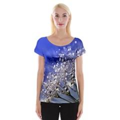 Dandelion 2015 0704 Women s Cap Sleeve Top