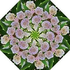 Amazing Garden Flowers 35 Folding Umbrellas