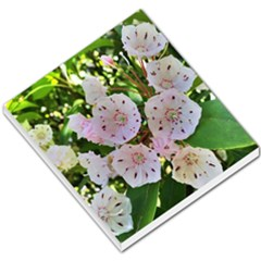 Amazing Garden Flowers 35 Small Memo Pads