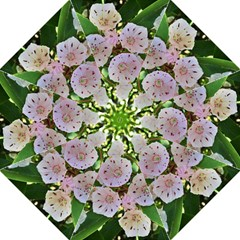 Amazing Garden Flowers 35 Hook Handle Umbrellas (Large)