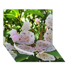 Amazing Garden Flowers 35 Heart Bottom 3d Greeting Card (7x5)