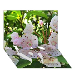 Amazing Garden Flowers 35 Love Bottom 3d Greeting Card (7x5)