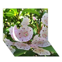 Amazing Garden Flowers 35 Circle 3D Greeting Card (7x5)