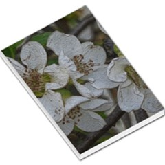 Amazing Garden Flowers 32 Large Memo Pads