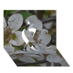 Amazing Garden Flowers 32 Ribbon 3d Greeting Card (7x5)