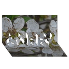 Amazing Garden Flowers 32 Sorry 3d Greeting Card (8x4)