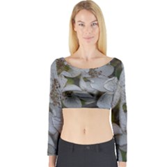 Amazing Garden Flowers 32 Long Sleeve Crop Top