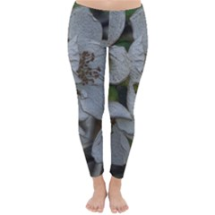 Amazing Garden Flowers 32 Winter Leggings