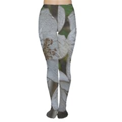 Amazing Garden Flowers 32 Women s Tights