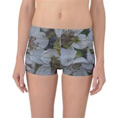 Amazing Garden Flowers 32 Boyleg Bikini Bottoms