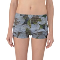Amazing Garden Flowers 32 Reversible Boyleg Bikini Bottoms