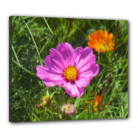 Amazing Garden Flowers 24 Canvas 24  X 20