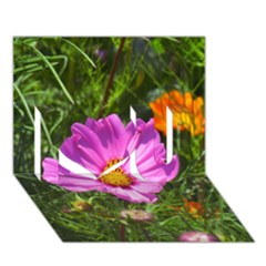 Amazing Garden Flowers 24 I Love You 3D Greeting Card (7x5)