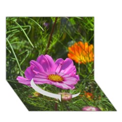 Amazing Garden Flowers 24 Circle Bottom 3D Greeting Card (7x5)