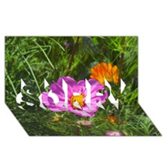 Amazing Garden Flowers 24 SORRY 3D Greeting Card (8x4)