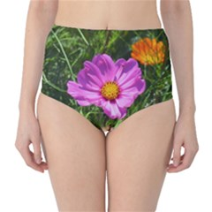 Amazing Garden Flowers 24 High-Waist Bikini Bottoms