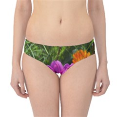 Amazing Garden Flowers 24 Hipster Bikini Bottoms