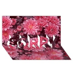 Awesome Flowers Red Sorry 3d Greeting Card (8x4)