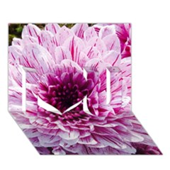 Wonderful Flowers I Love You 3d Greeting Card (7x5)