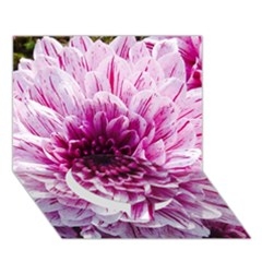 Wonderful Flowers Circle Bottom 3d Greeting Card (7x5)