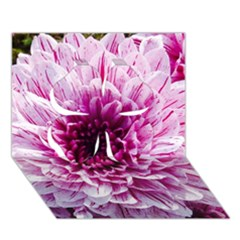 Wonderful Flowers Clover 3d Greeting Card (7x5)