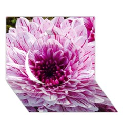 Wonderful Flowers Circle 3d Greeting Card (7x5)