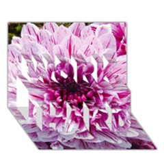 Wonderful Flowers WORK HARD 3D Greeting Card (7x5)