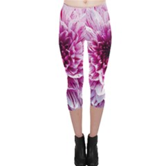 Wonderful Flowers Capri Leggings