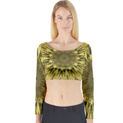 Kaleido Flower,golden Long Sleeve Crop Top