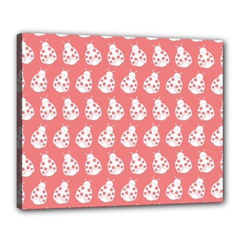 Coral And White Lady Bug Pattern Canvas 20  X 16