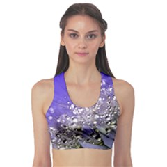 Dandelion 2015 0705 Sports Bra