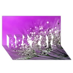 Dandelion 2015 0707 BEST SIS 3D Greeting Card (8x4)