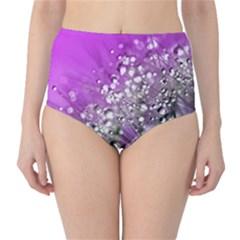 Dandelion 2015 0707 High Waist Bikini Bottoms