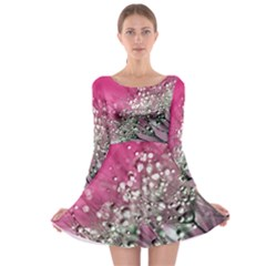 Dandelion 2015 0709 Long Sleeve Skater Dress