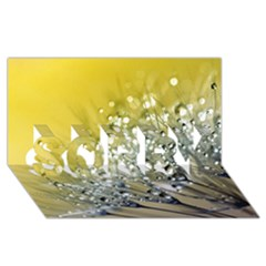 Dandelion 2015 0713 SORRY 3D Greeting Card (8x4)