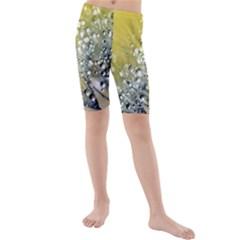 Dandelion 2015 0713 Kid s Swimwear
