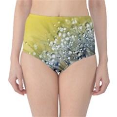 Dandelion 2015 0713 High-Waist Bikini Bottoms