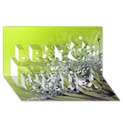 Dandelion 2015 0714 Best Wish 3D Greeting Card (8x4)